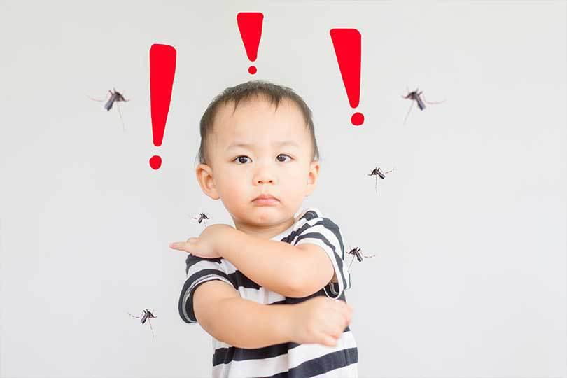 Seberapa Bahayakah Demam Berdarah Pada Si Kecil?