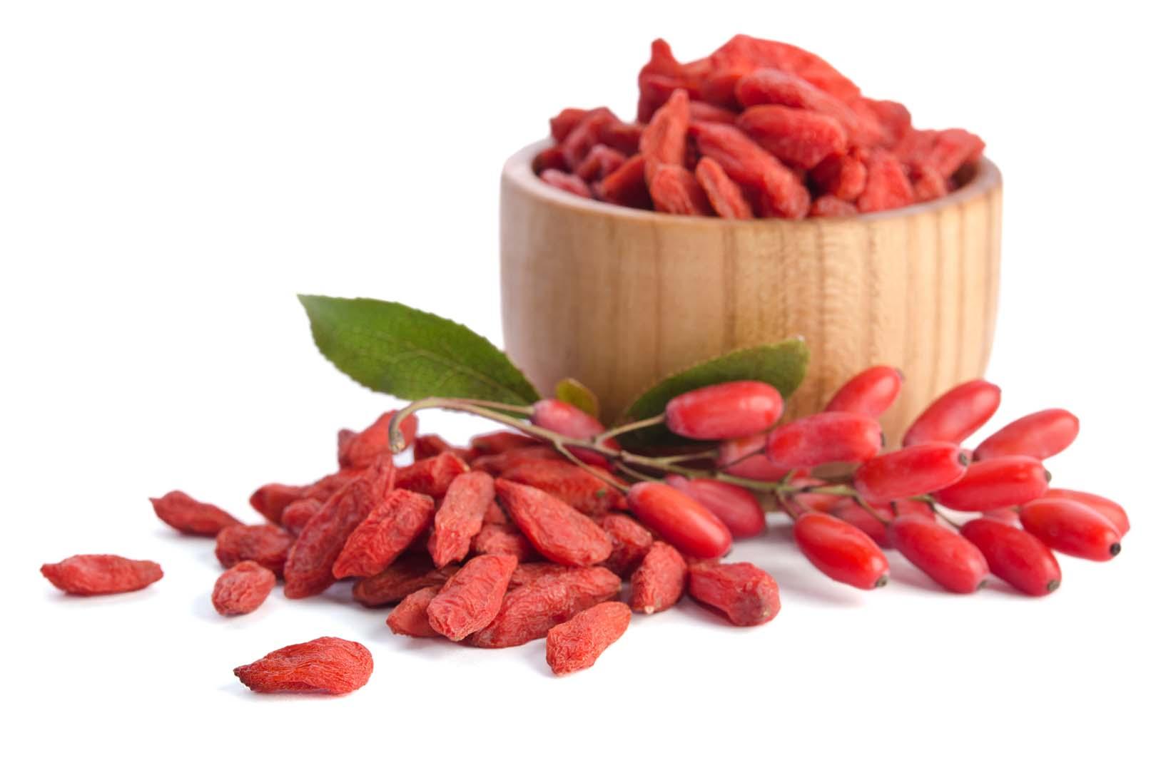 fructus lycium barbarum