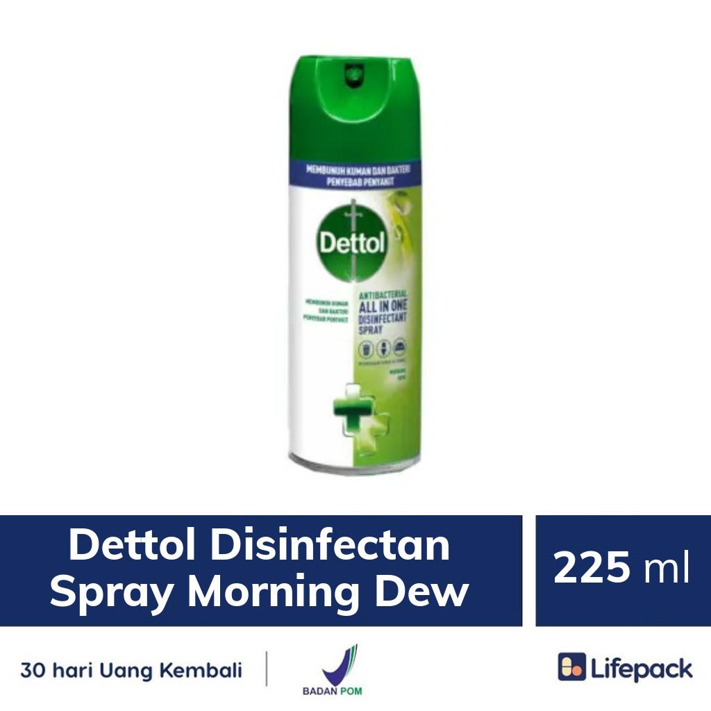 Dettol Disinfectan Spray Morning Dew - Lifepack.id